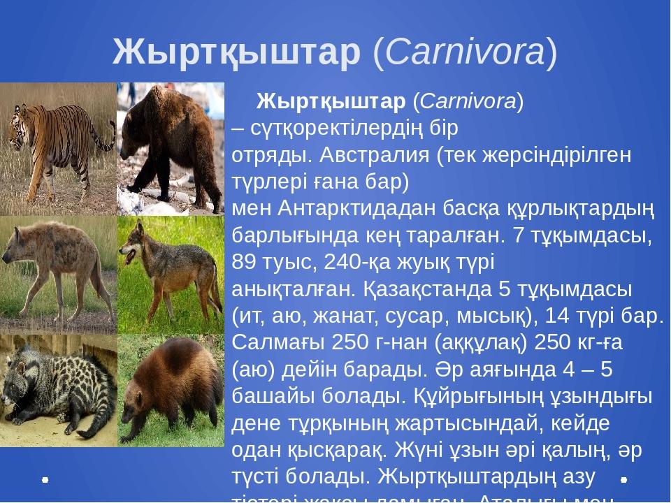 Жыртқыштар(Carnivora) Жыртқыштар(Carnivora) –сүтқоректілердіңбір отряды....