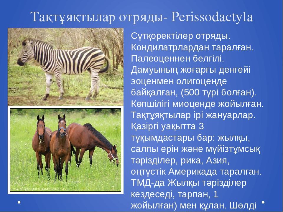 Тақтұяқтылар отряды- Perissodactyla Cүтқоректілер отряды. Кондилатрлардан тар...