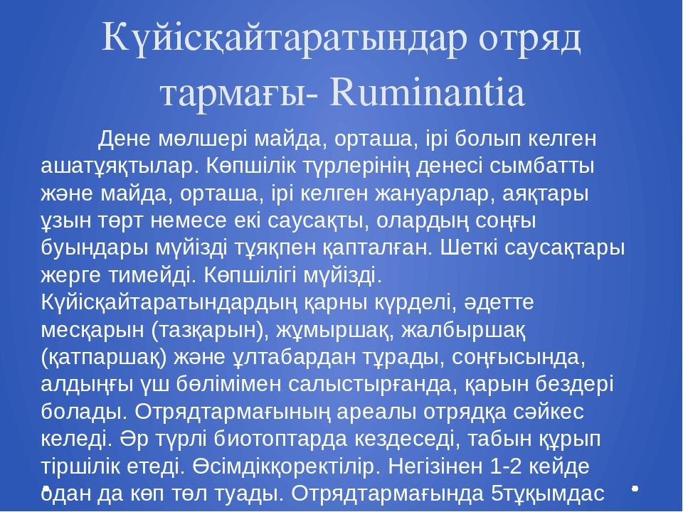 Күйісқайтаратындар отряд тармағы- Ruminantia Дене мөлшері майда, орташа, ірі...