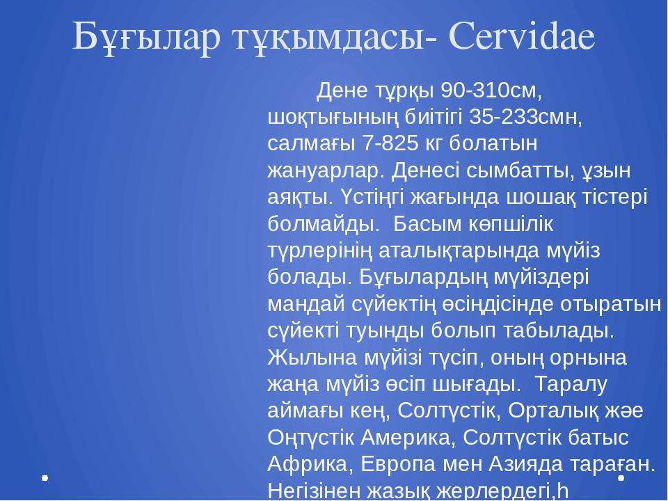 Бұғылар тұқымдасы- Cervidae Дене тұрқы 90-310см, шоқтығының биітігі 35-233смн...