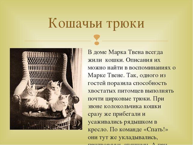 Скачать книгу марка твена дик бейкер и его кот