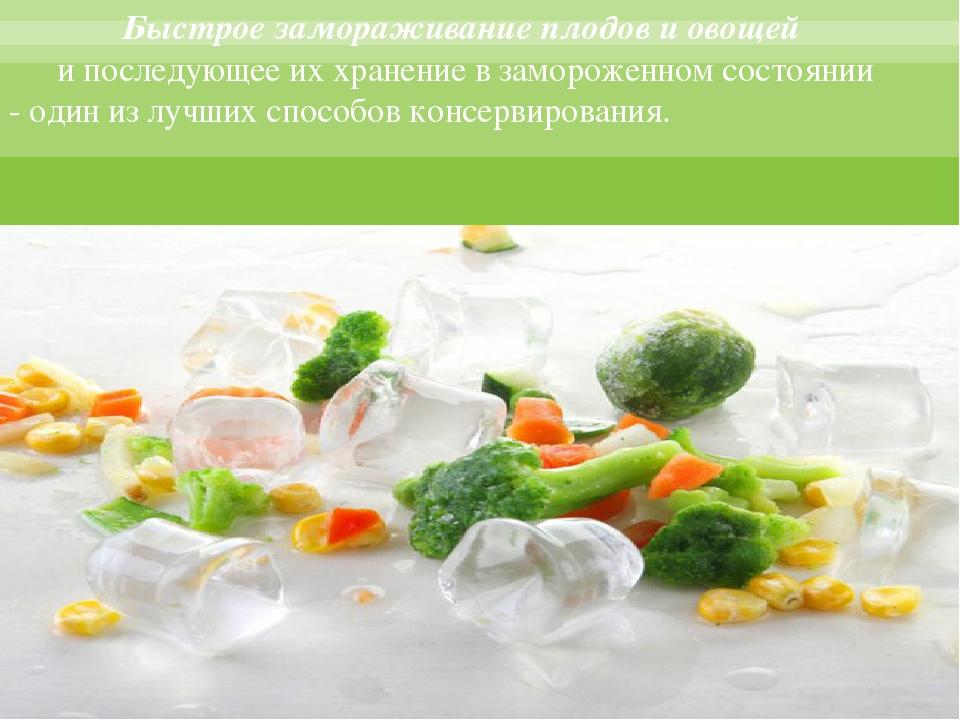 Замораживание плодов и овощей реферат 2768