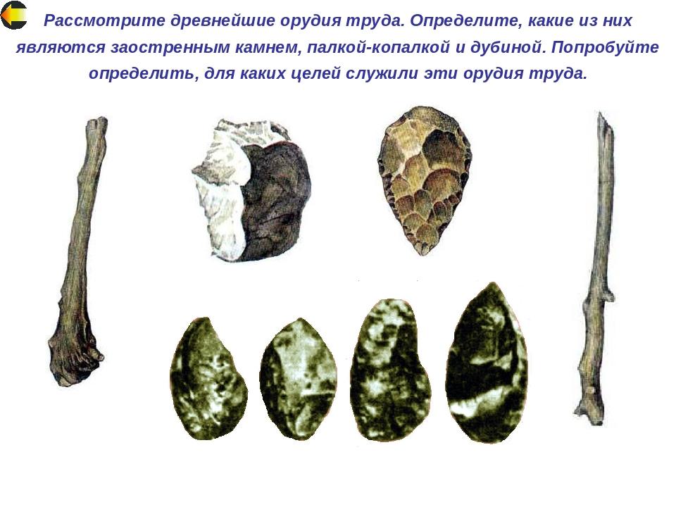 длины древнейшие орудие картинки увёз мальчика казахстан