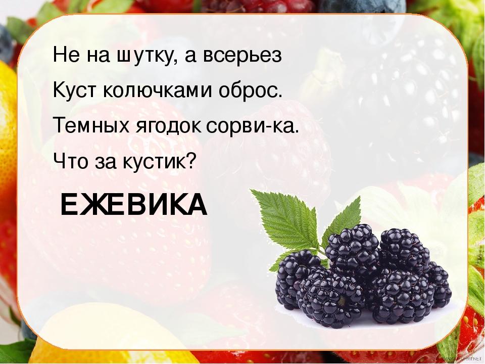 стихи про ягодку короткие