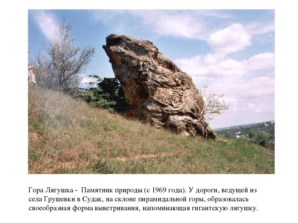 Гора Лягушка - Памятник природы (с 1969 года). У дороги, ведущей из села Гру...