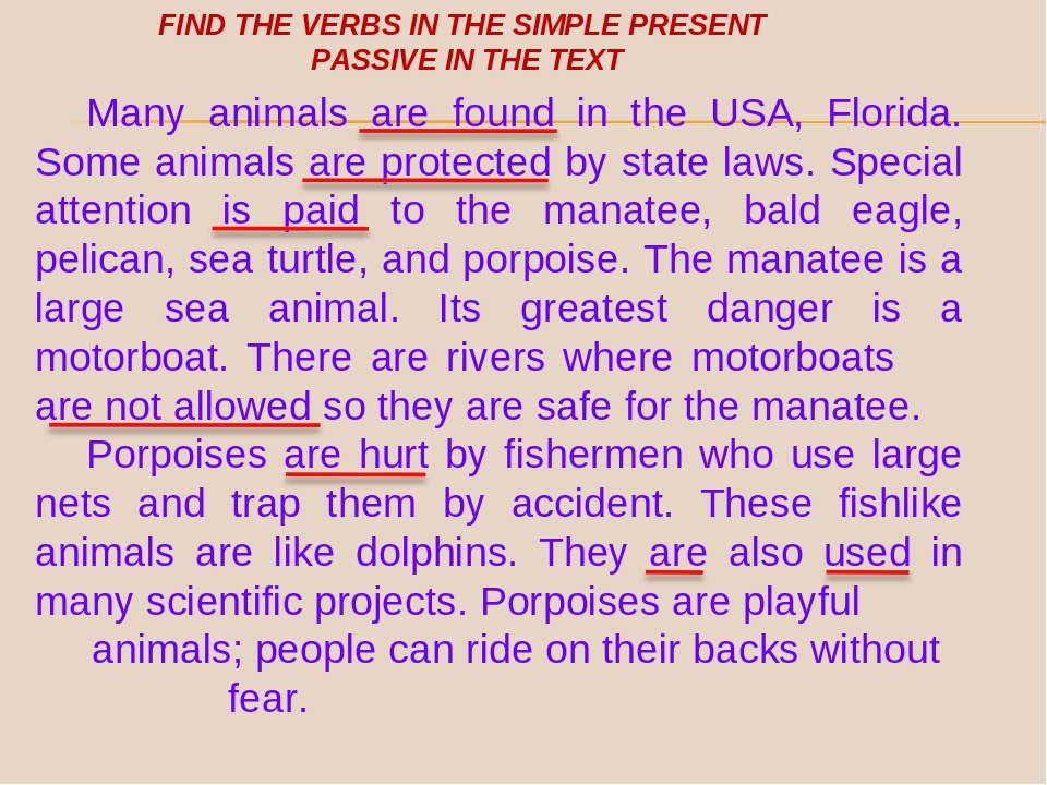 Many animals are found in the USA, Florida. Some animals are protected by st...