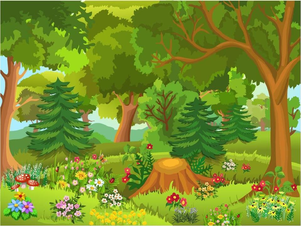Картинки леса рисованного