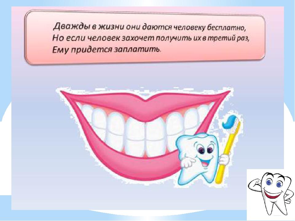 картинки мы и наши зубы крепче поэтому важно подобрать