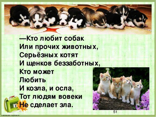 —Кто любит собак Или прочих животных, Серьёзных котят И щенков беззаботных,...