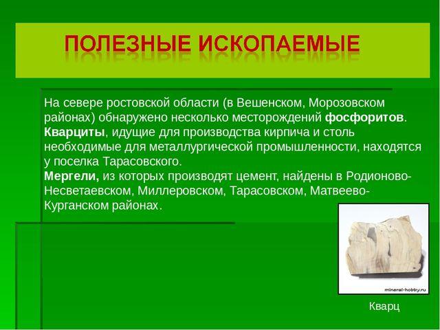 На севере ростовской области (в Вешенском, Морозовском районах) обнаружено н...