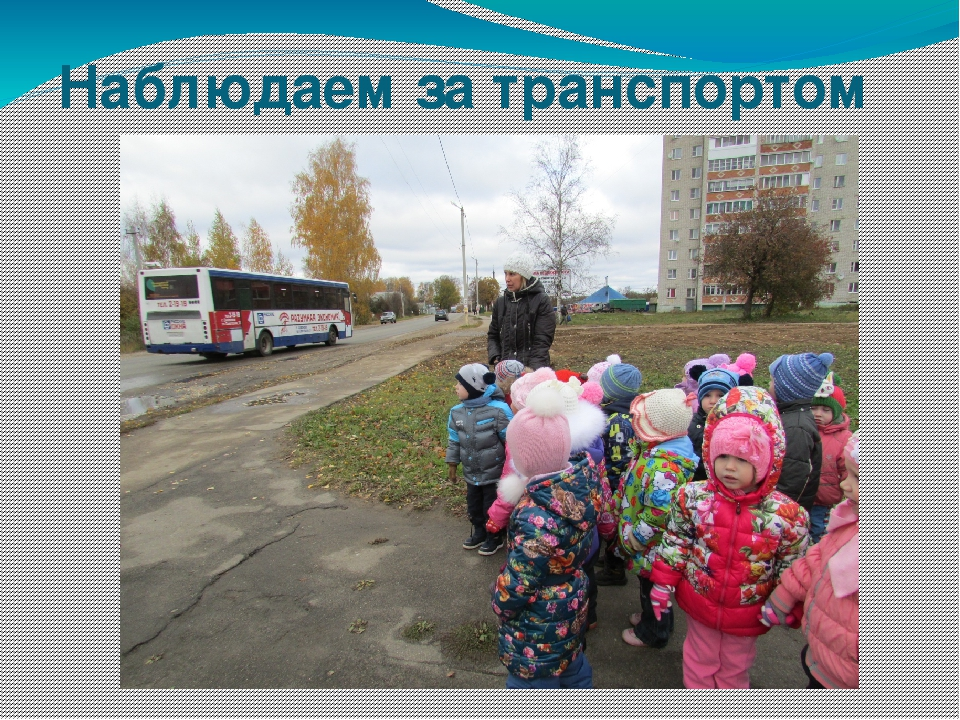 Наблюдаем за транспортом