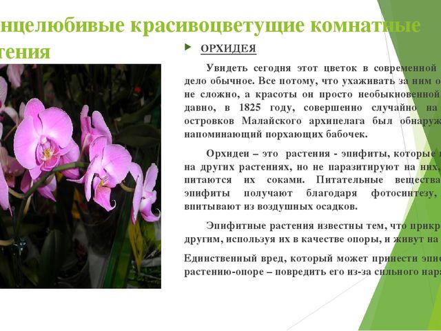 Солнцелюбивые красивоцветущие комнатные растения ОРХИДЕЯ Увидеть сегодня это...