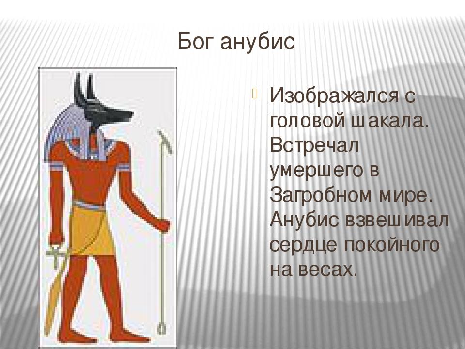 Бог анубис Изображался с головой шакала. Встречал умершего в Загробном мире....