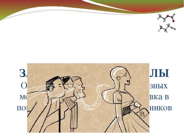 ЗАПАХ – ЭТО МОЛЕКУЛЫ Один запах может состоять из разных молекул, а обонятель...
