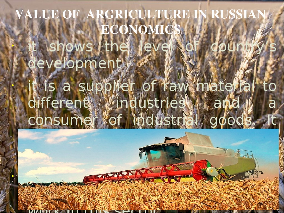 VALUE OF ARGRICULTURE IN RUSSIAN ECONOMICS it shows the level of country's d...