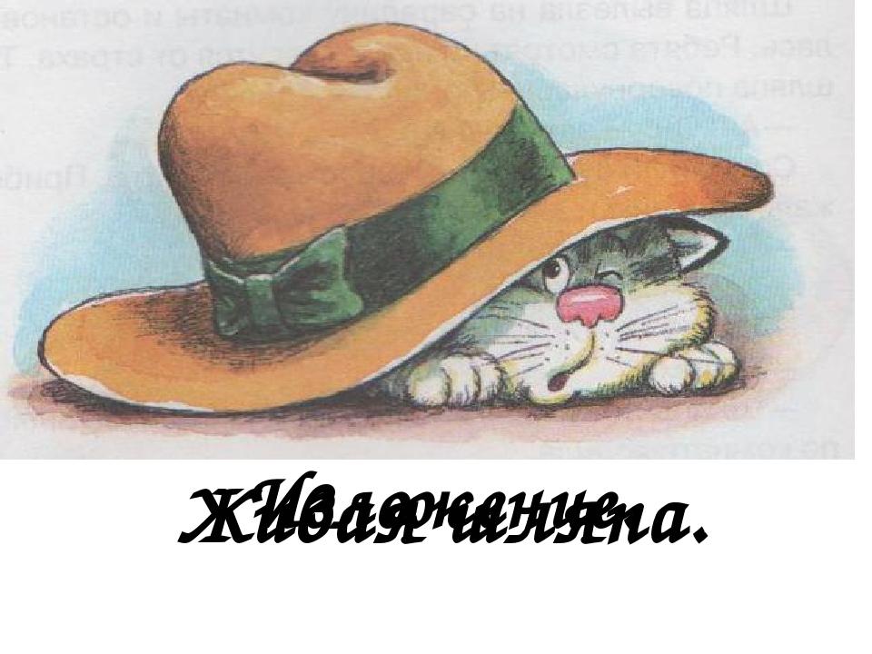 Н носов живая шляпа в картинках