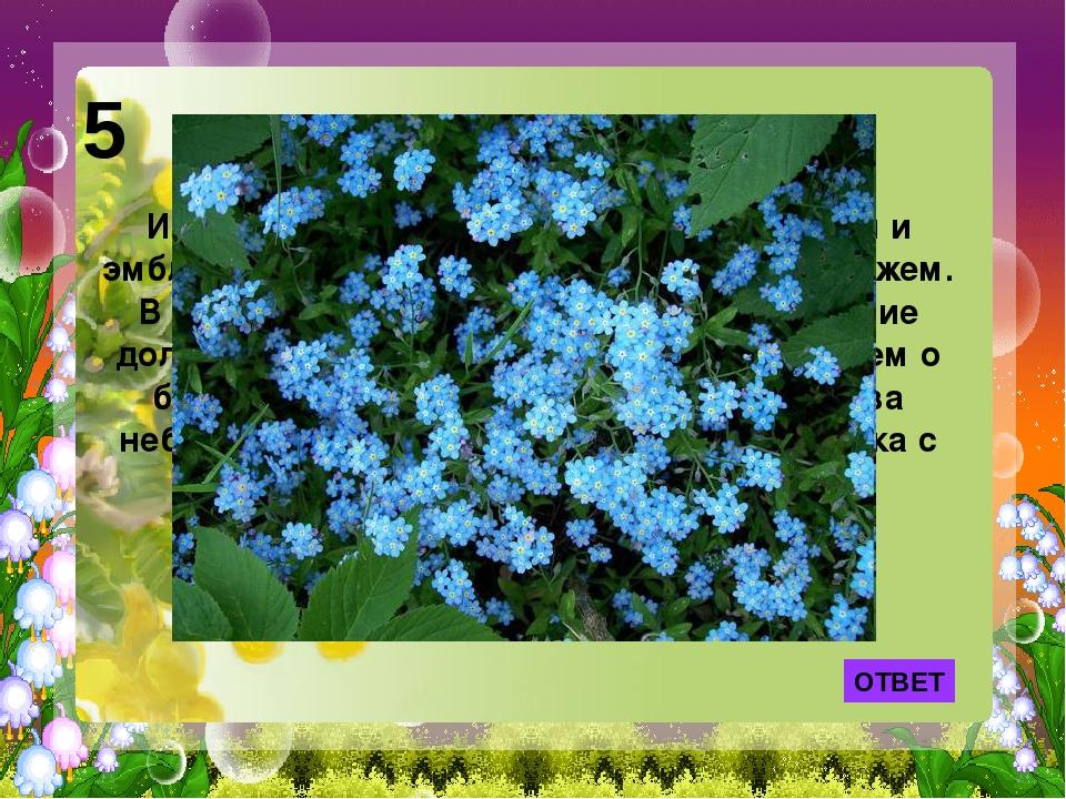 ОТВЕТ Именно этот цветок стал символом тоски и эмблемой верной любви между же...