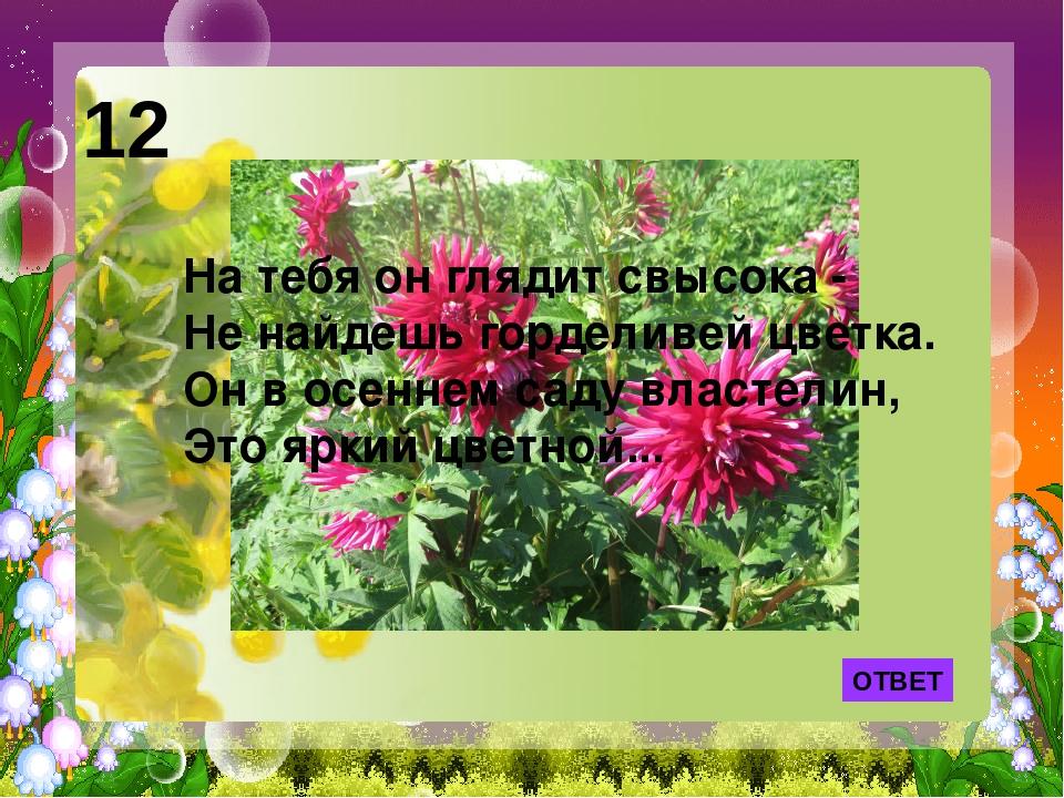 ОТВЕТ 12 На тебя он глядит свысока - Не найдешь горделивей цветка. Он в осенн...