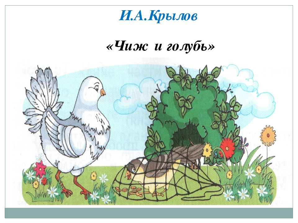 Рисунок к басне чиж и голубь и.а.крылова