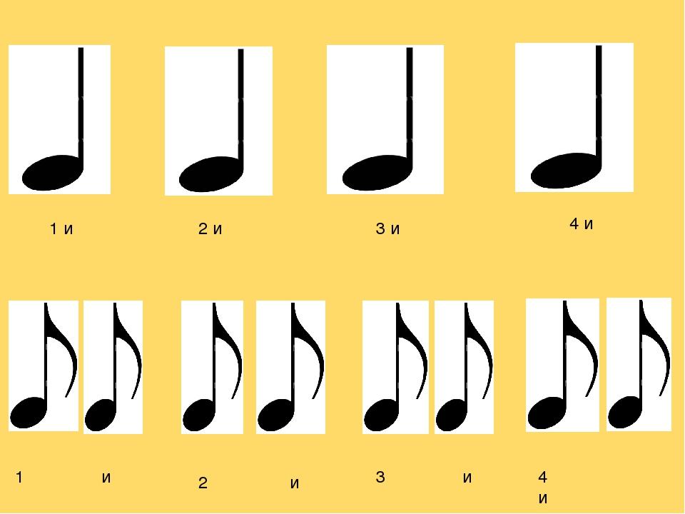буцко основная ритмическая кдиница
