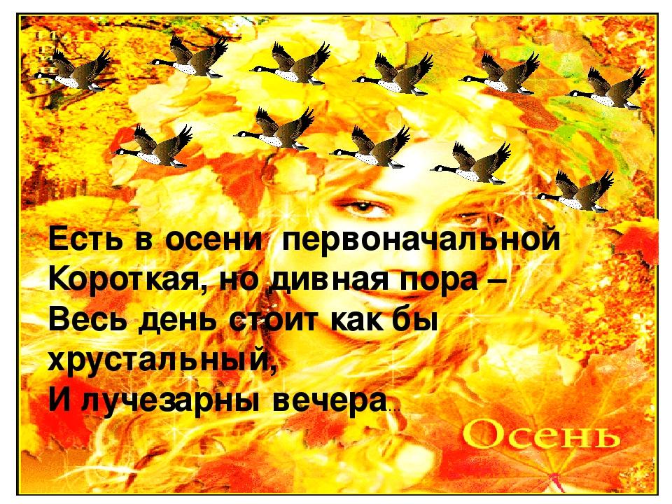 выполняется очистка стихи о осени короткие красивые картинки привезти хельсинки