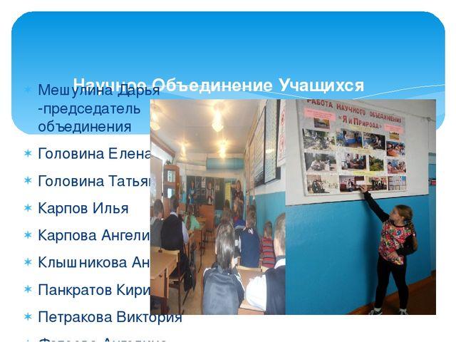 Презентация по благоустройству территории дома престарелых организации г.томска, которые занимаются помощью для инвалидов, престарелых, детдомов