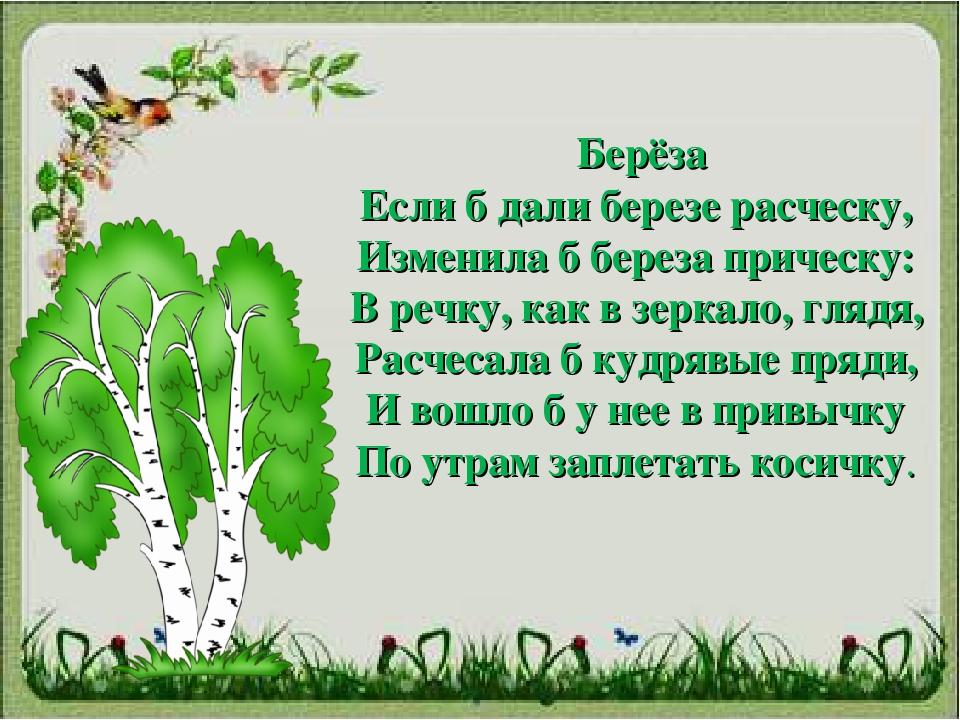 Поэты связанные стихи с деревом