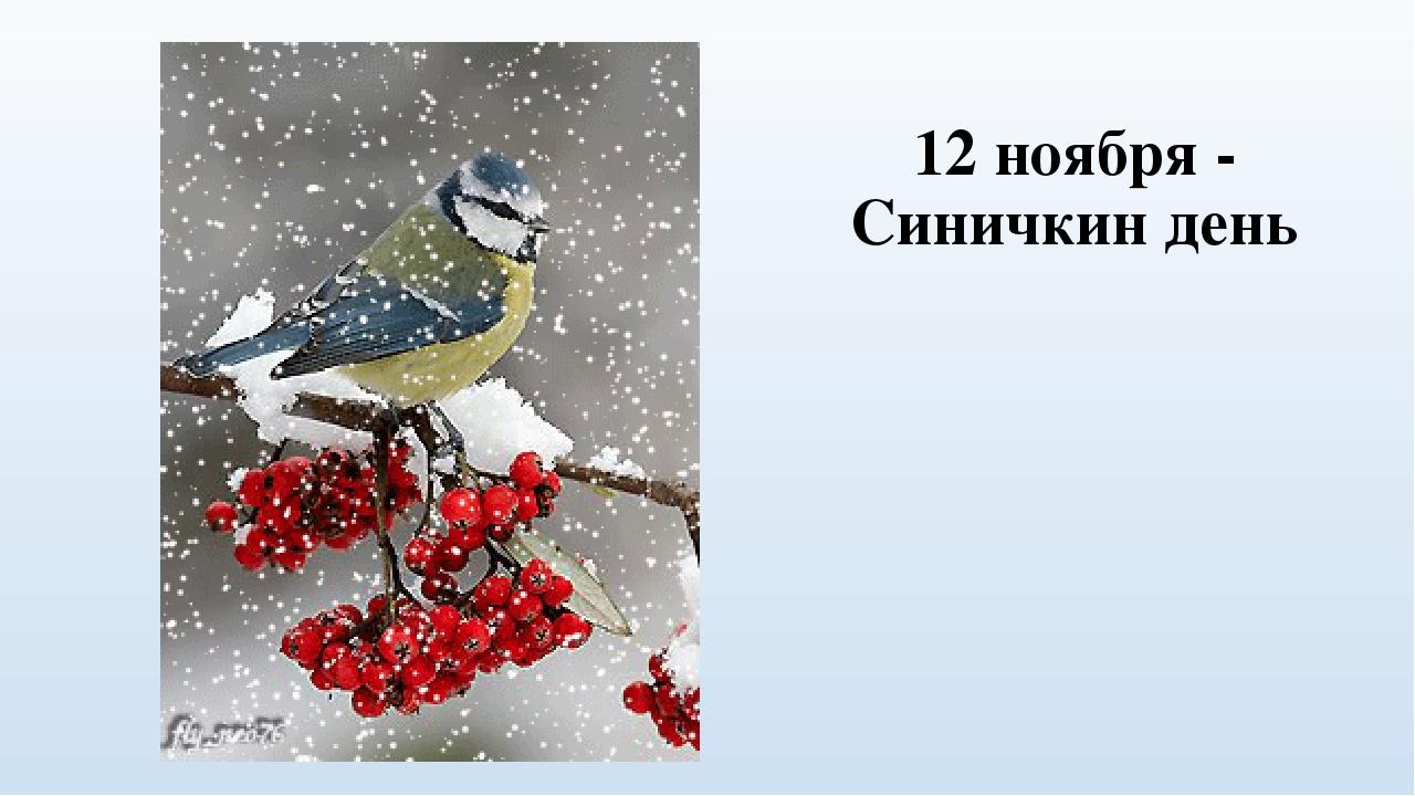 Картинки 12 ноября синичкин день