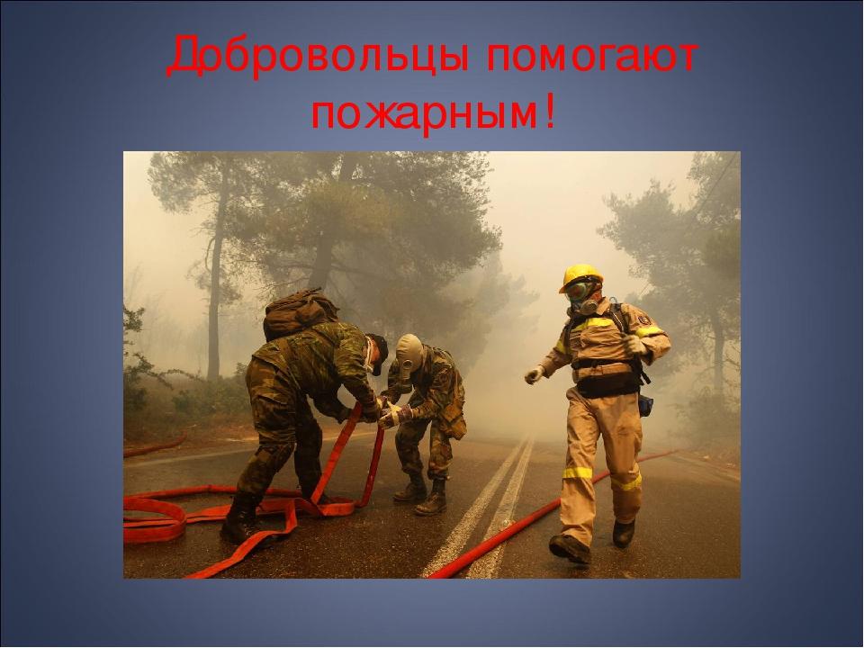 Добровольцы помогают пожарным!