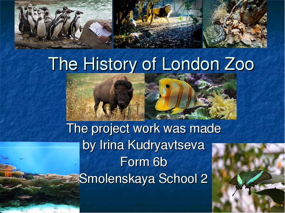 The History of London Zoo The project work was made by Irina Kudryavtseva For...