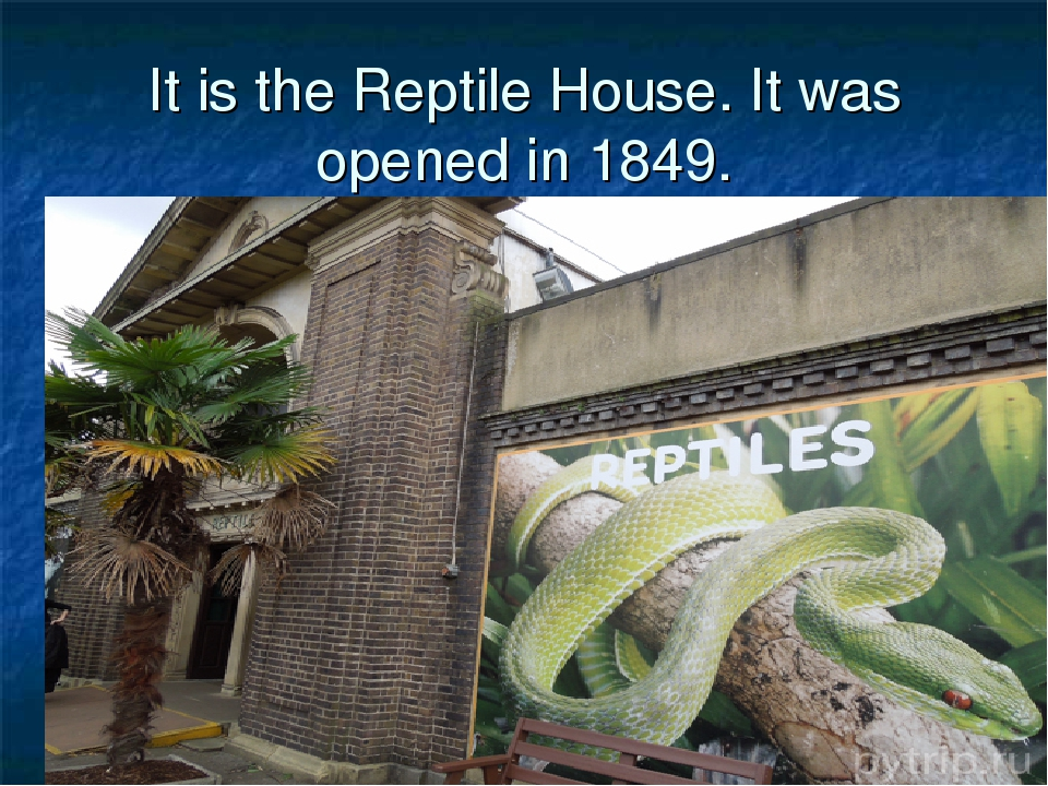 It is the Reptile House. It was opened in 1849.