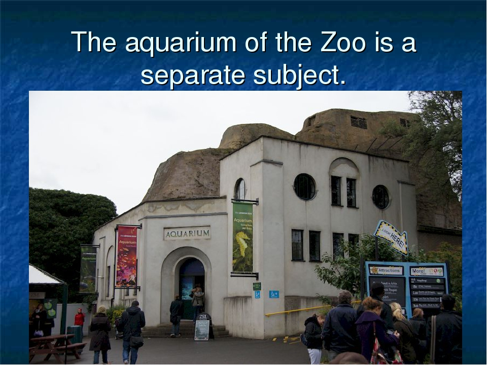 The aquarium of the Zoo is a separate subject.