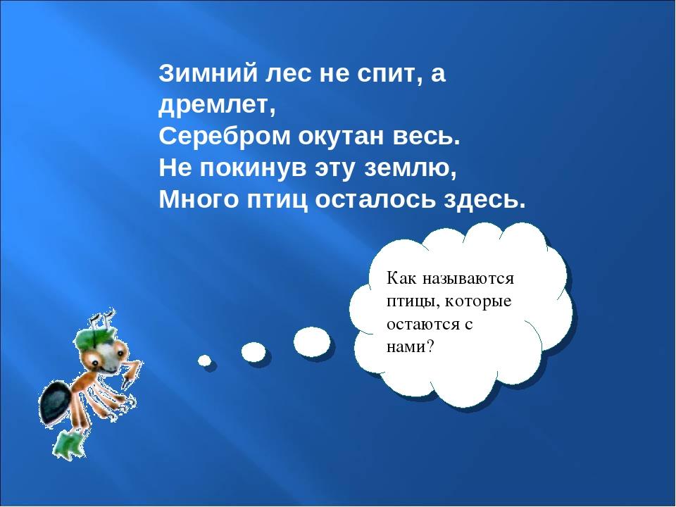 Зимний лес не спит, а дремлет, Серебром окутан весь. Не покинув эту землю, М...