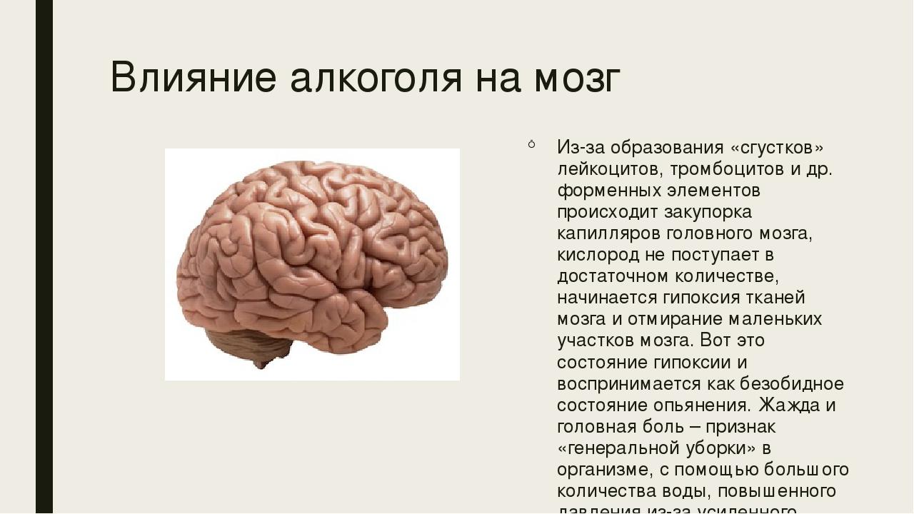 какие-то картинки алкоголя на мозг связи этим