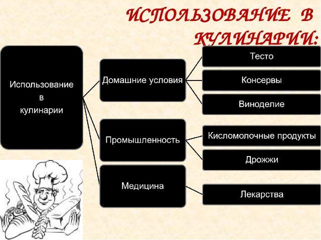 ИСПОЛЬЗОВАНИЕ В КУЛИНАРИИ: