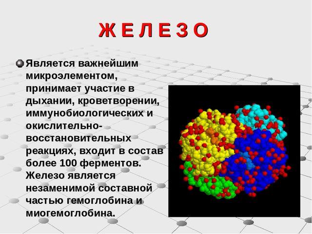 """Картинки по запросу """"биологическая роль железа"""""""