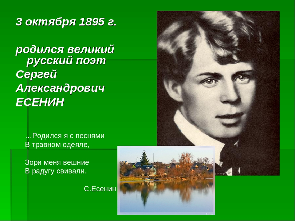 Есенина биография картинки