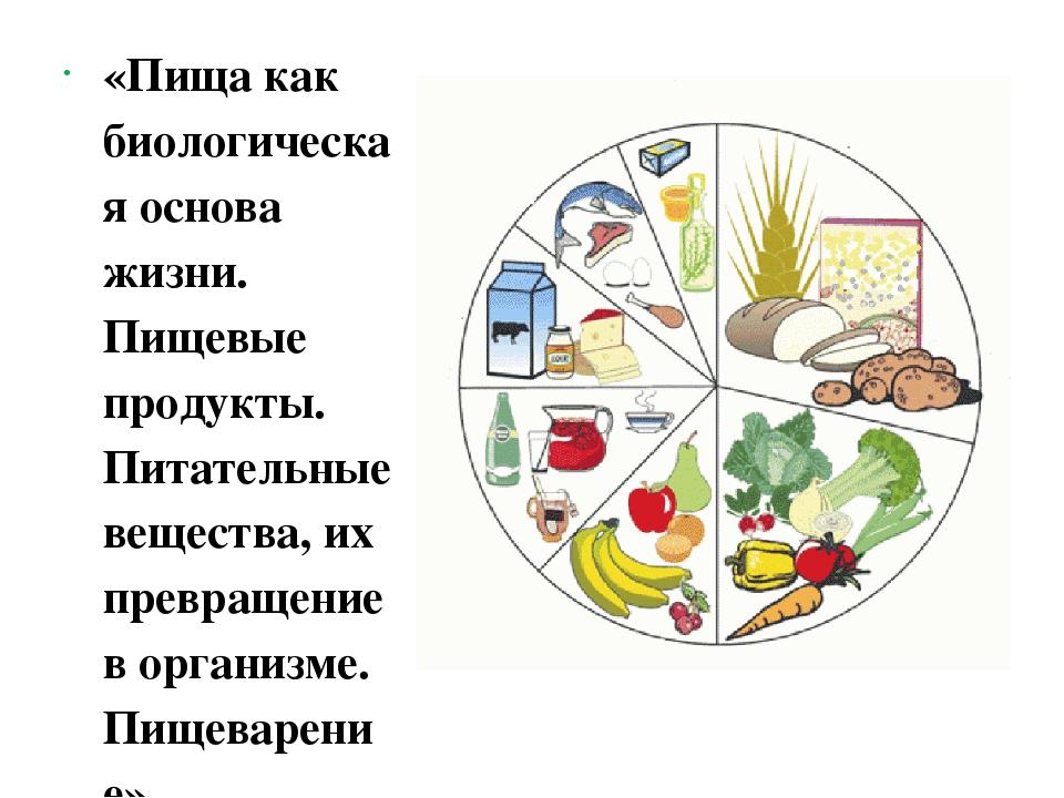 «Пища как биологическая основа жизни. Пищевые продукты. Питательные вещества...