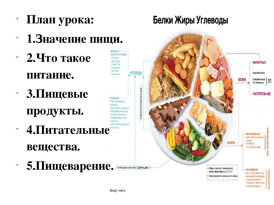 План урока: 1.Значение пищи. 2.Что такое питание. 3.Пищевые продукты. 4.Пита...