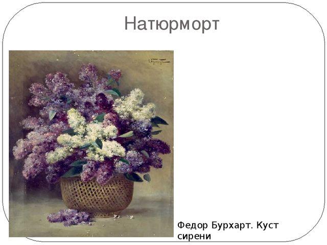 Натюрморт Федор Бурхарт. Куст сирени