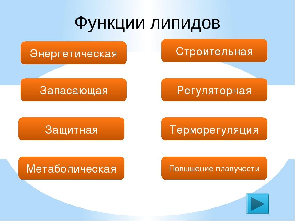 Функции липидов Энергетическая Запасающая Защитная Строительная Регуляторная...