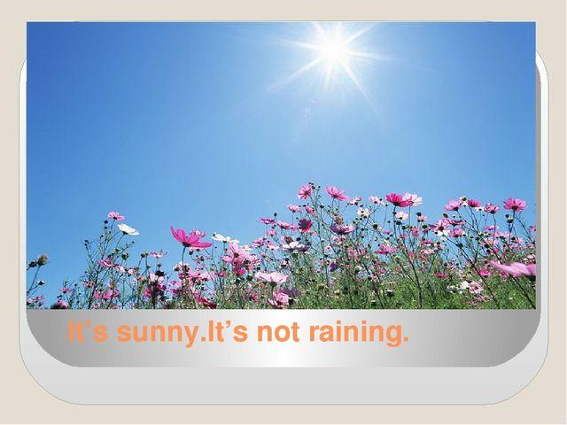 It's sunny.It's not raining.