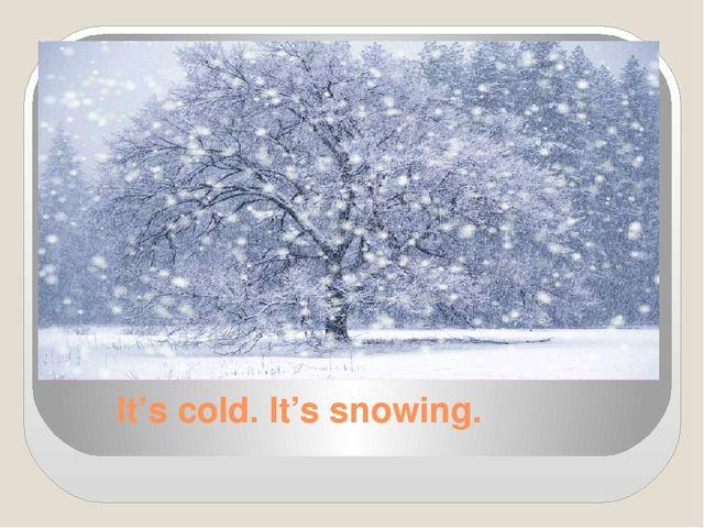 It's cold. It's snowing.