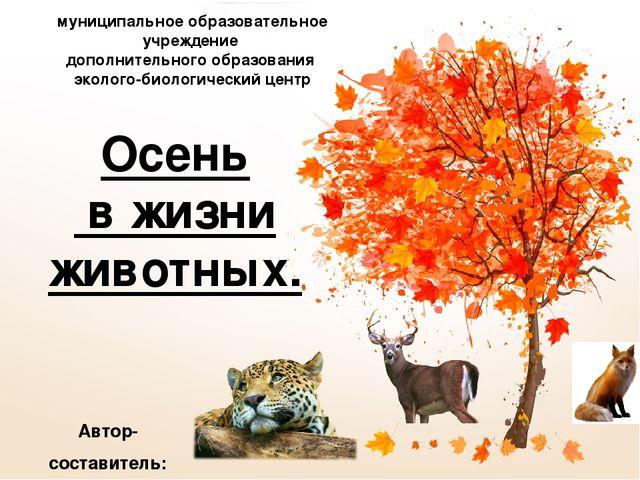 Доклад осенние изменения в жизни животных 8516
