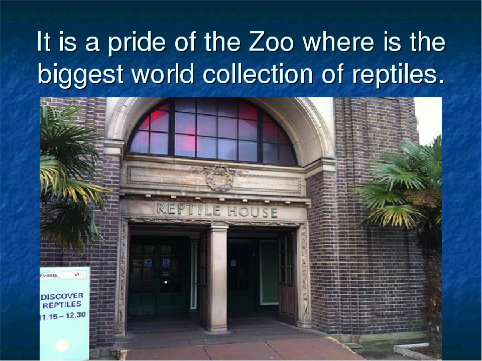 It is a pride of the Zoo where is the biggest world collection of reptiles.