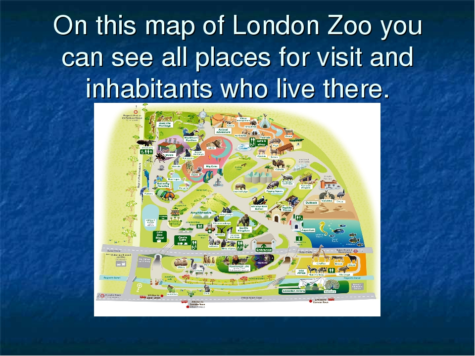 On this map of London Zoo you can see all places for visit and inhabitants wh...