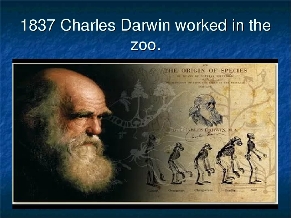 1837 Charles Darwin worked in the zoo.