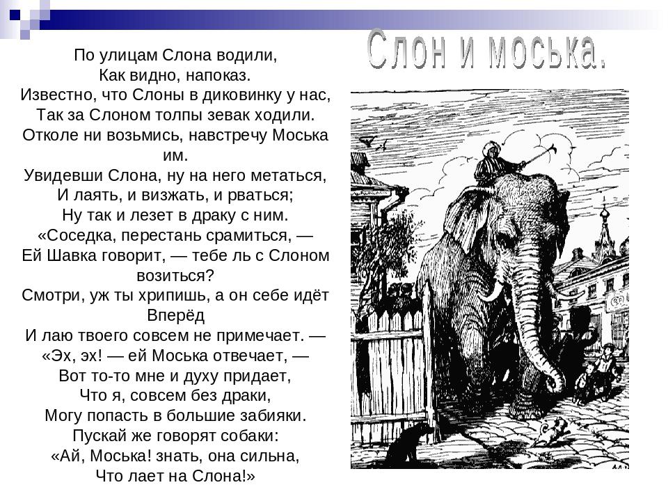 Слон и моська басня с картинками