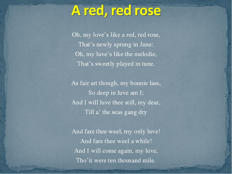 a red red rose essay example A red, red rose essay robert burns this study guide consists of approximately 27 pages of chapter summaries, quotes, character analysis, themes, and more - everything you need to sharpen your knowledge of a red, red rose.