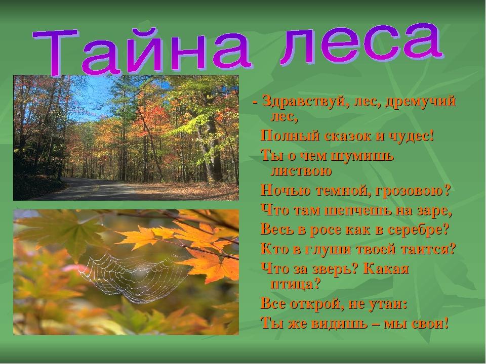- Здравствуй, лес, дремучий лес, Полный сказок и чудес! Ты о чем шумишь лист...